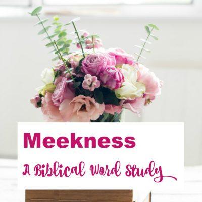 Meekness – A Biblical Word Study
