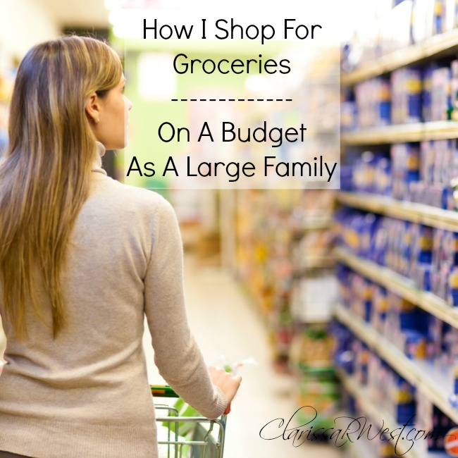 How I Shop For Groceries On A Budget As A Large Family