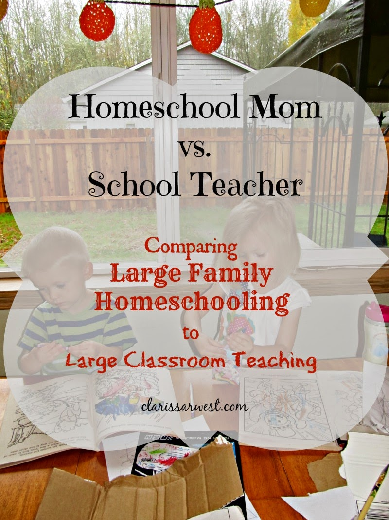 Homeschool Mom vs. School Teacher