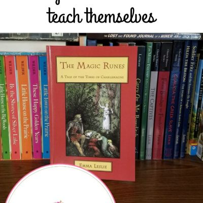 GIVEAWAY – Homeschool Resources My Children Use To Teach Themselves