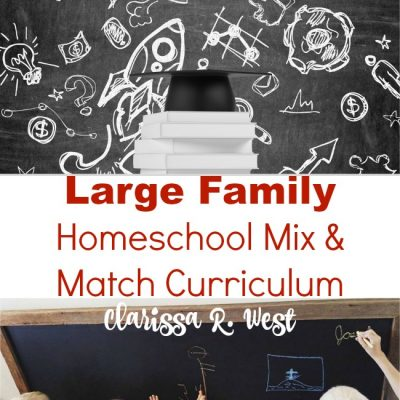 Large Family Homeschool Mix And Match Curriculum