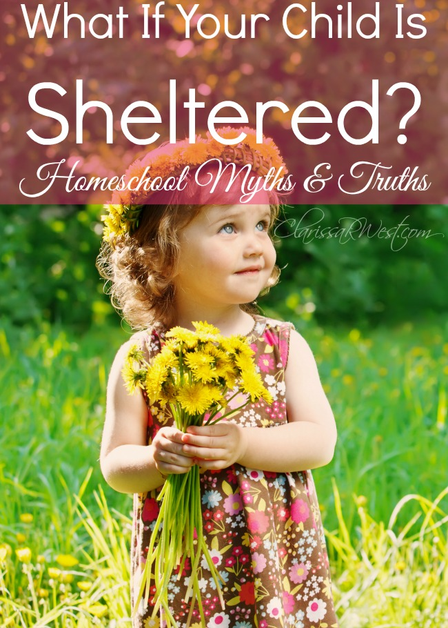 What If Your Child Is Sheltered? (homeschool myths & truths)