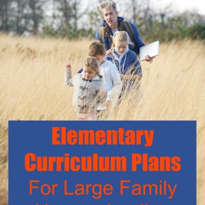 Elementary Curriculum Plans | Large Family Homeschooling