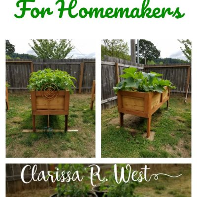 Backyard Garden Basics For Homemakers | FREE Printable