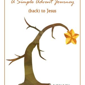 A Simple Advent Journey (back) to Jesus