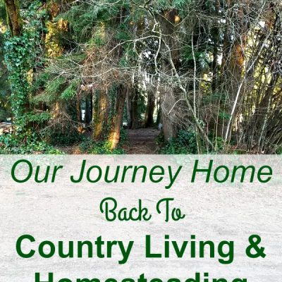 Our Journey Home | Back To Country Living & Homesteading