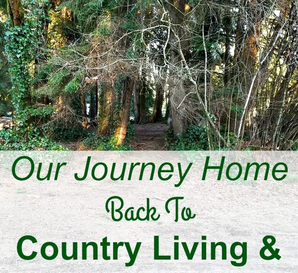 Our Journey Home Back To Country Living & Homesteading