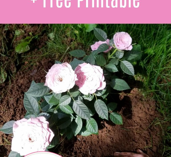 The Benediction Biblical Word Study + Free Printable