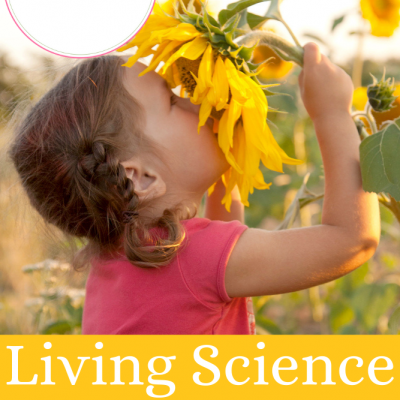 Living Science For Elementary Grades | Prep For Science Classes