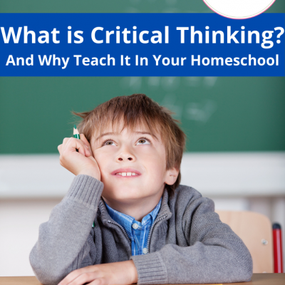 What is Critical Thinking? And Why Teach It In Your Homeschool